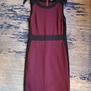 Figure flattering two tone dress
